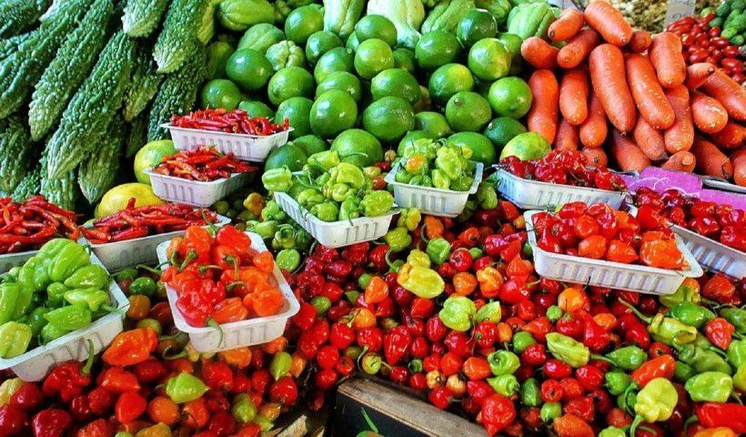 warzywa w proszku